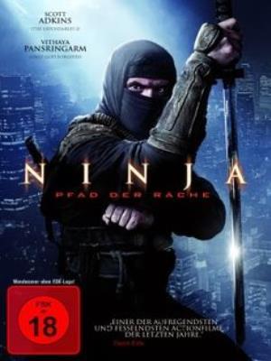sat-thu-ninja-2